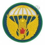 Airborne 242 Training Center Forces Patch