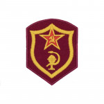 Medical and Veterinary Services Patch