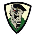 Russian Military Army Spetsnaz Patch - Werewolf Black Beret