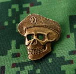 Russomilitare: Russian military badge, skull in beret