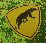 Russomilitare: Russian Army Military Special Forces Spetsnaz Panther patch green