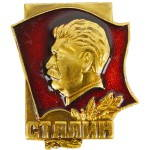 Russomilitare: Sovietica, Comandante In Capo Stalin Pin Badge